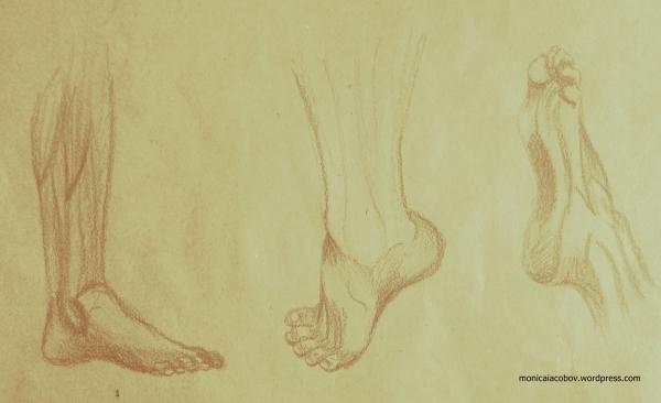 Exercitiu picior